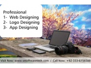 Affordable web design packages With SE Software Technologies