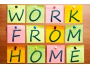 Free Work at Home Jobs Directory (4824)